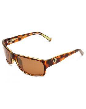 Unisex Sunglasses Converse CV BUZZER BEATER TORTOISE 62