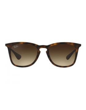 Unisex Sunglasses Ray-Ban RB4221 865/13 (50 mm)