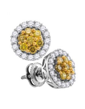 10kt White Gold Womens Round Yellow Diamond Cluster Screwback Earrings 1.00 Cttw