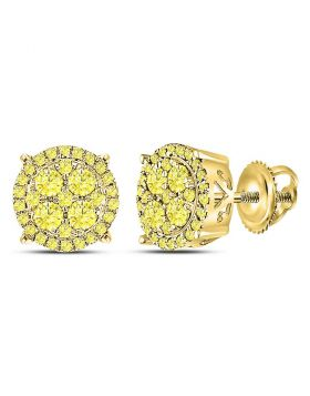 10kt Yellow Gold Womens Round Canary Diamond Cluster Stud Earrings 1.00 Cttw