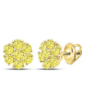 10kt Yellow Gold Womens Round Color Enhanced Diamond Cluster Earrings 3/4 Cttw