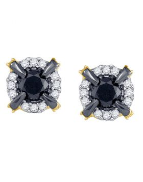 10kt Yellow Gold Womens Round Black Color Enhanced Diamond Stud Earrings 1.00 Cttw