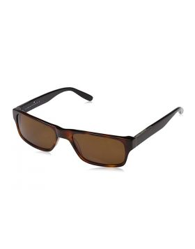Ladies' Sunglasses Adolfo Dominguez AD-14248-592